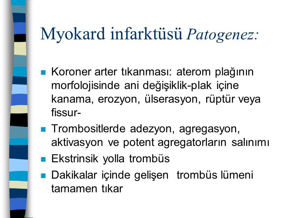 Myokard infarktüsü Patogenez: