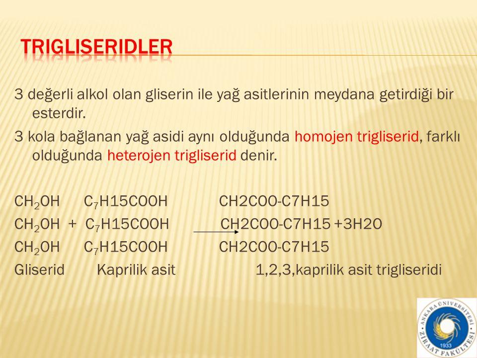 Trigliseridler