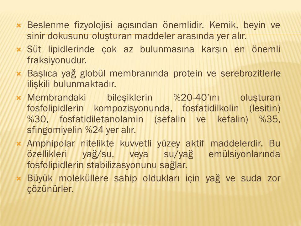 Beslenme fizyolojisi açısından önemlidir