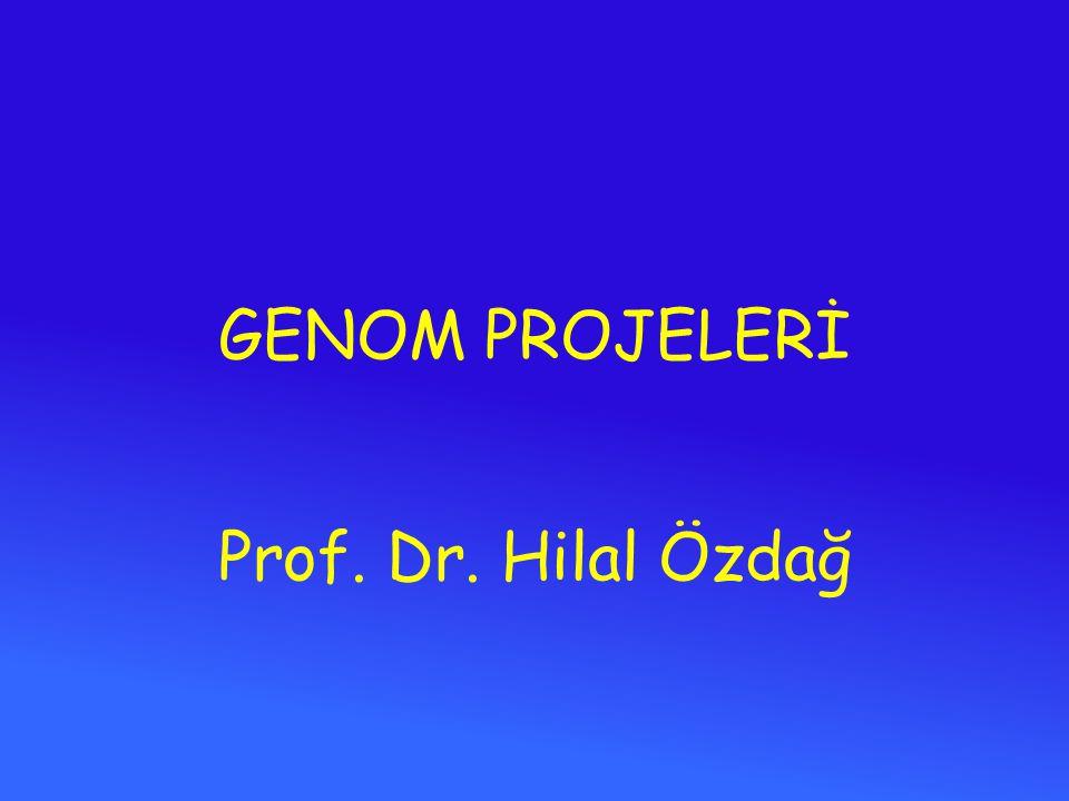 GENOM PROJELERİ Prof. Dr. Hilal Özdağ