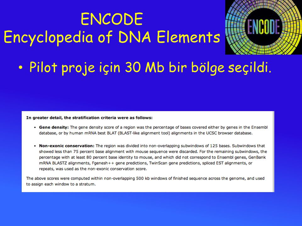 ENCODE Encyclopedia of DNA Elements