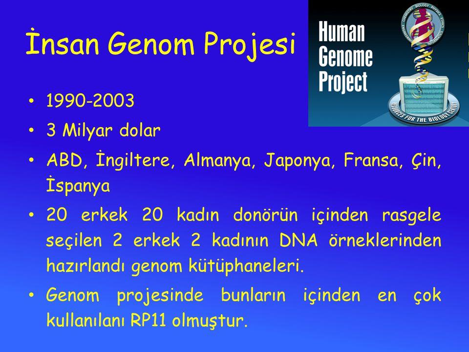 İnsan Genom Projesi 1990-2003 3 Milyar dolar