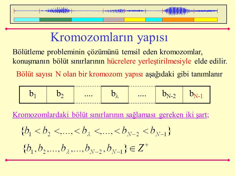 Kromozomların yapısı b1 b2 .... bλ bN-2 bN-1
