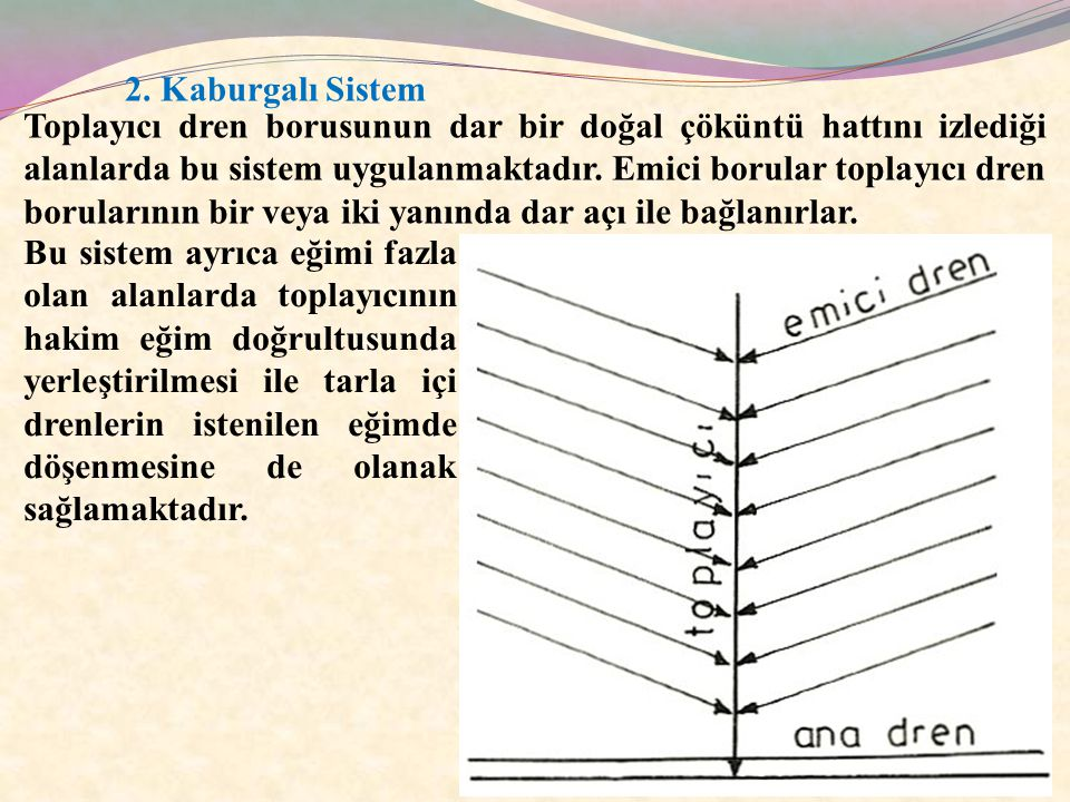 2. Kaburgalı Sistem