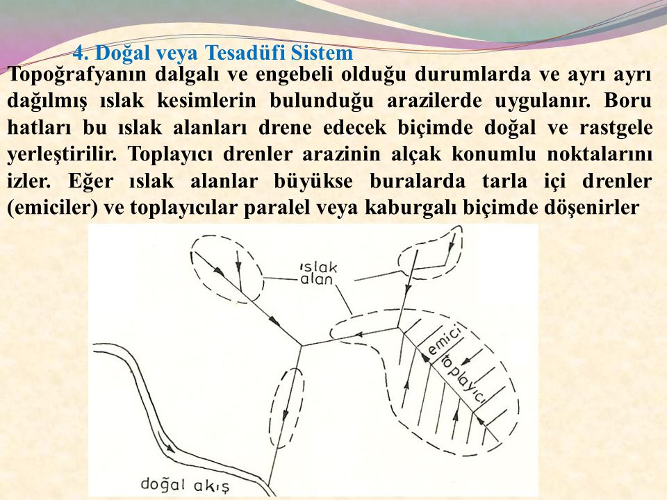4. Doğal veya Tesadüfi Sistem