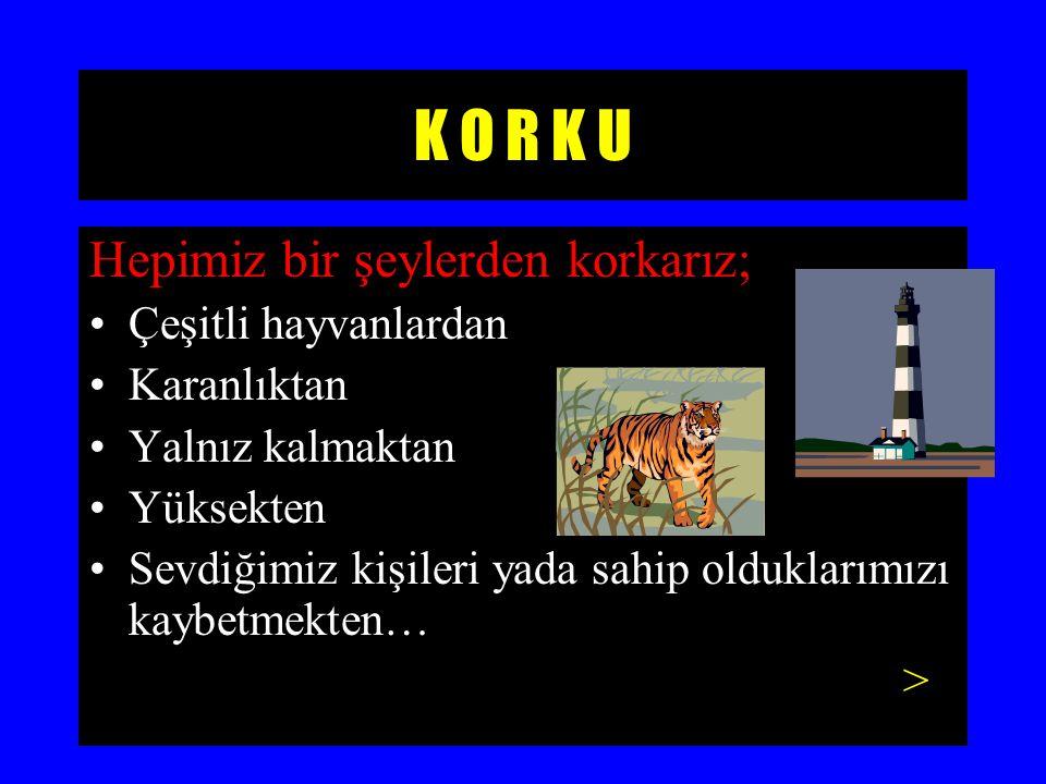 K O R K U Hepimiz bir şeylerden korkarız; Çeşitli hayvanlardan