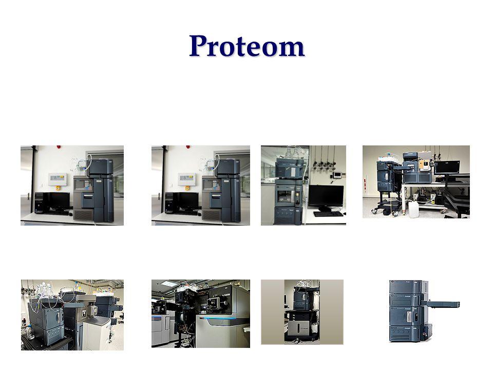 Proteom