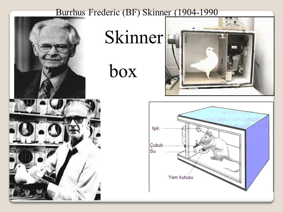Burrhus Frederic (BF) Skinner (1904-1990