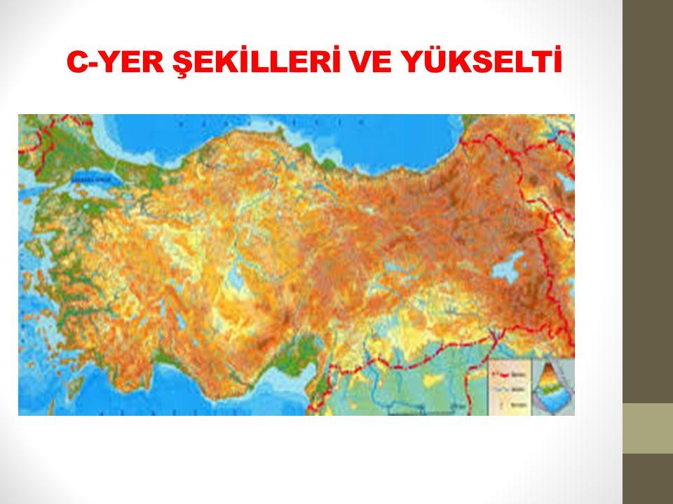 C-YER ŞEKİLLERİ VE YÜKSELTİ