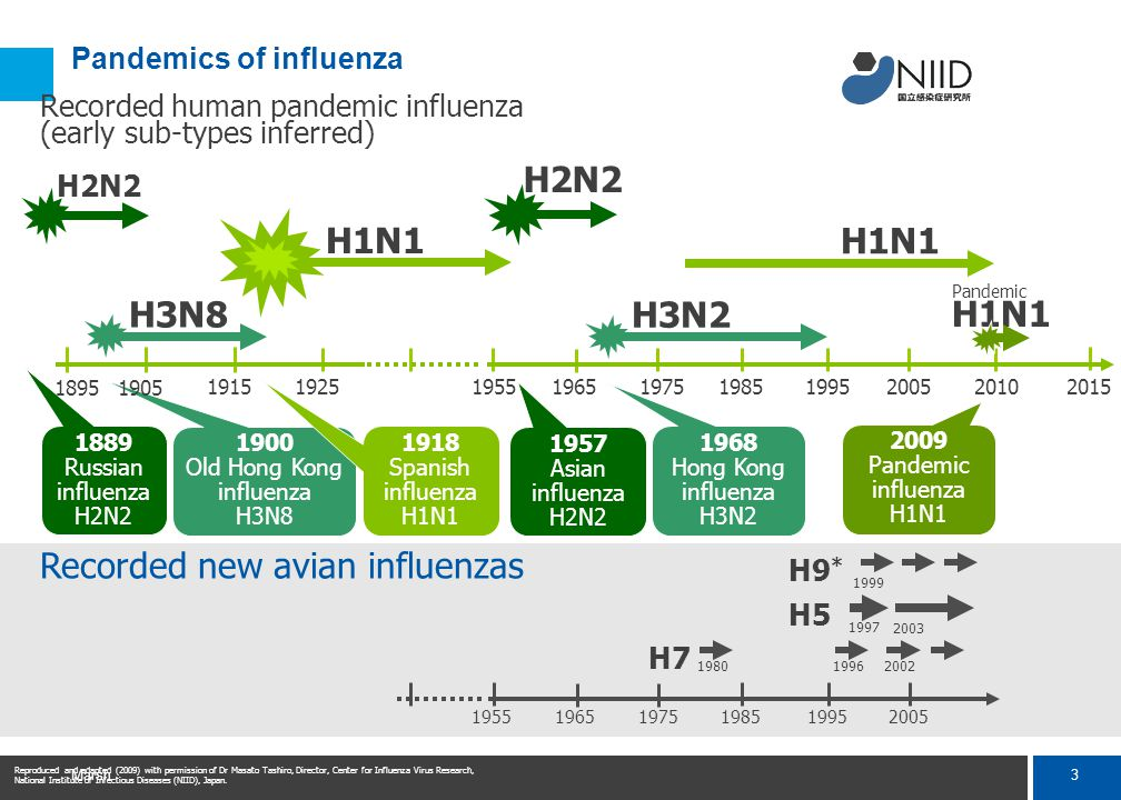 H1N1 İnfluenza A Pandemisi (Domuz Gribi)