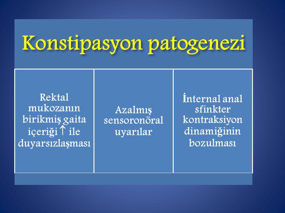 Konstipasyon patogenezi