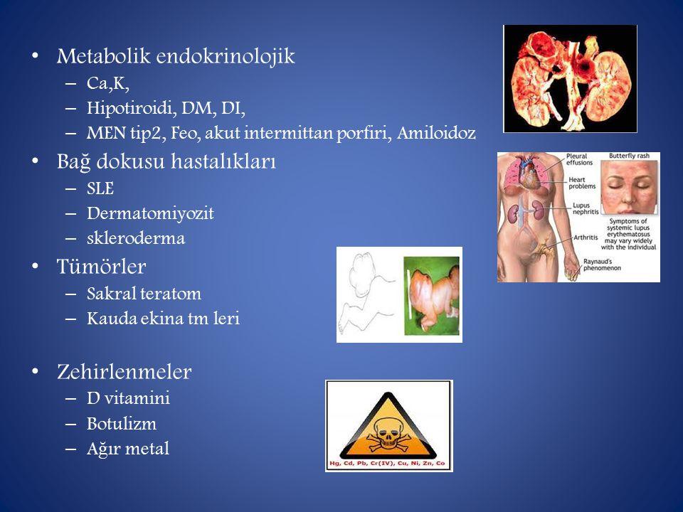 Metabolik endokrinolojik