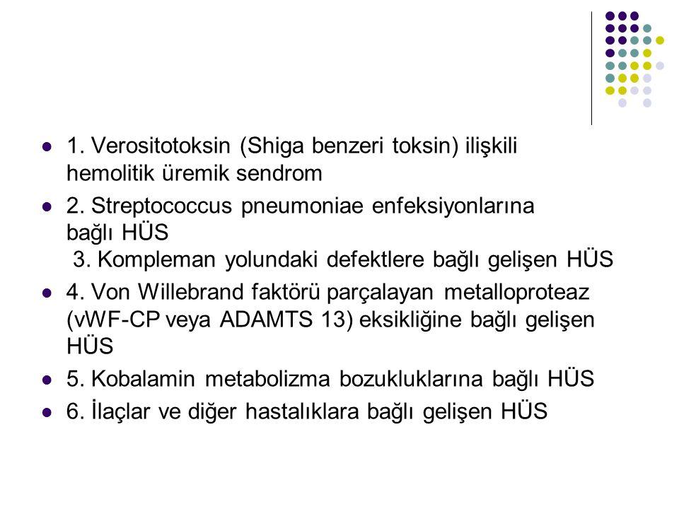 1. Verositotoksin (Shiga benzeri toksin) ilişkili hemolitik üremik sendrom