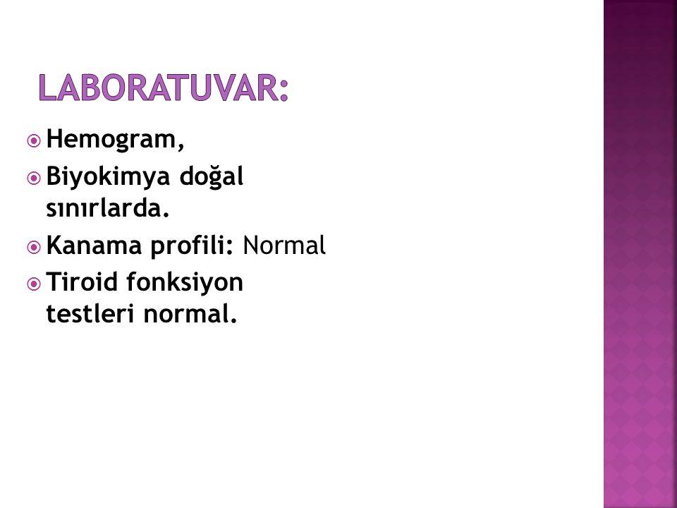 Laboratuvar: Hemogram, Biyokimya doğal sınırlarda.