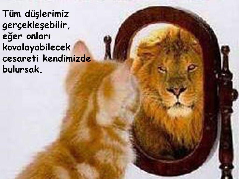 Tüm düşlerimiz gerçekleşebilir, eğer onları kovalayabilecek cesareti kendimizde bulursak.