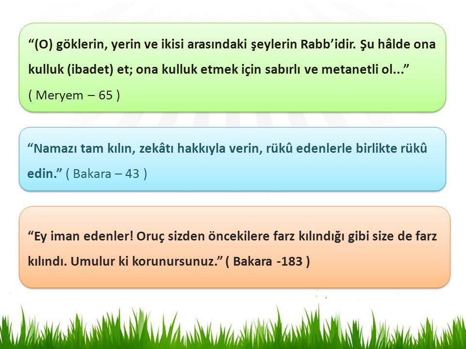 (O) göklerin, yerin ve ikisi arasındaki şeylerin Rabb'idir