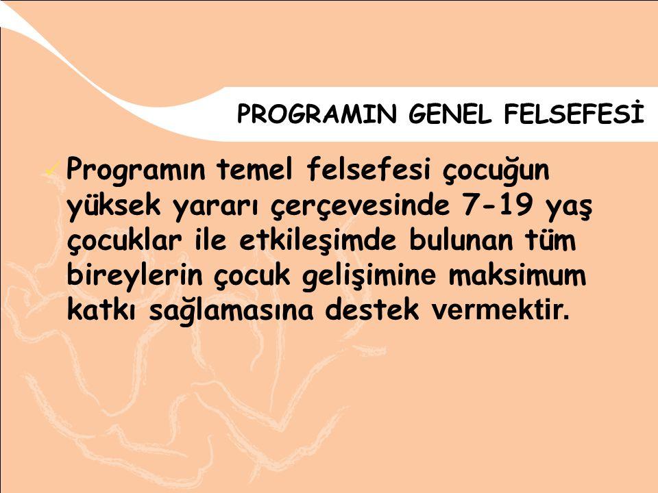 PROGRAMIN GENEL FELSEFESİ