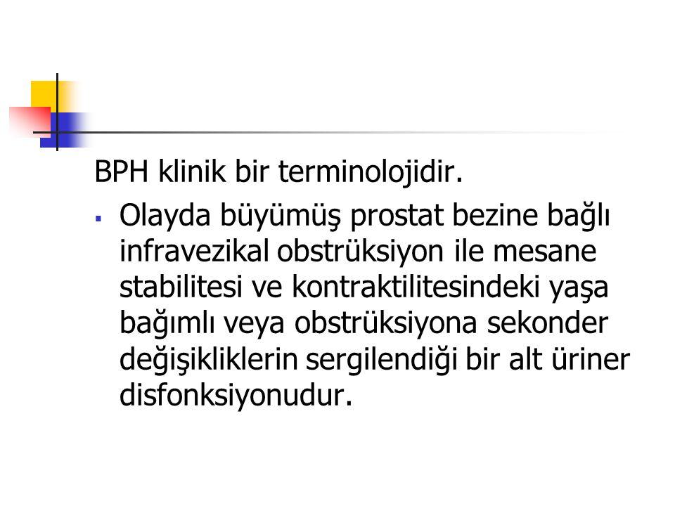 BPH klinik bir terminolojidir.