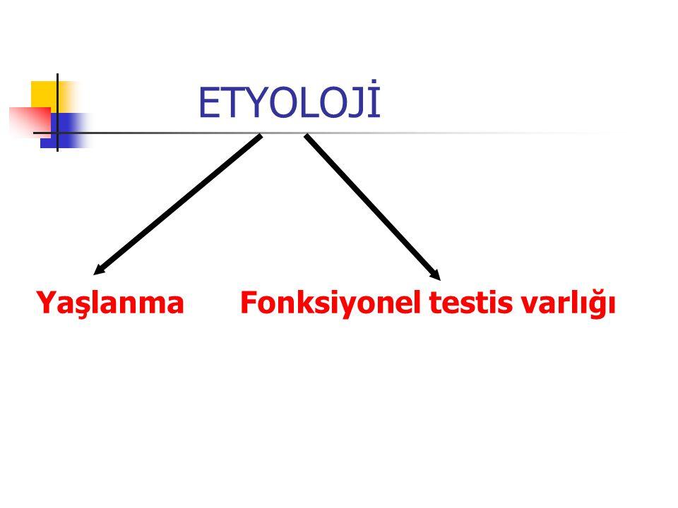 ETYOLOJİ Yaşlanma Fonksiyonel testis varlığı