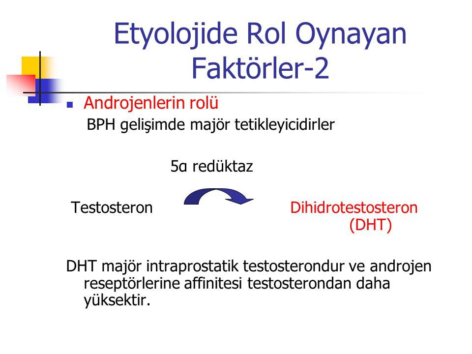 Etyolojide Rol Oynayan Faktörler-2