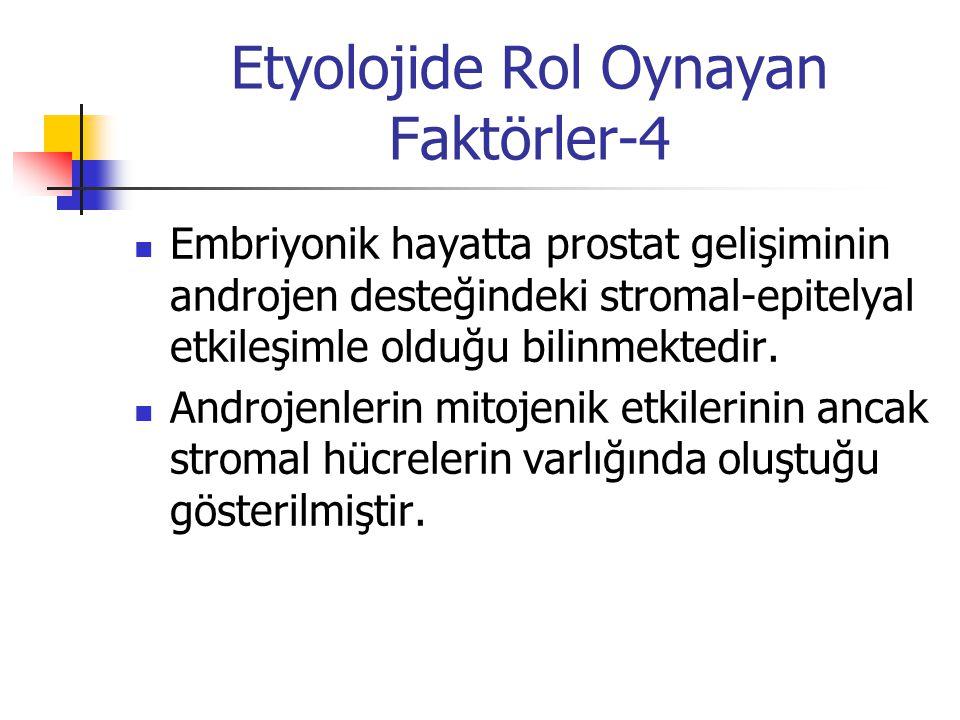 Etyolojide Rol Oynayan Faktörler-4