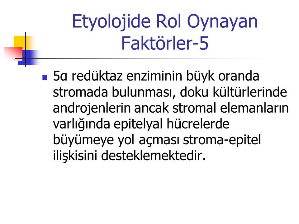 Etyolojide Rol Oynayan Faktörler-5