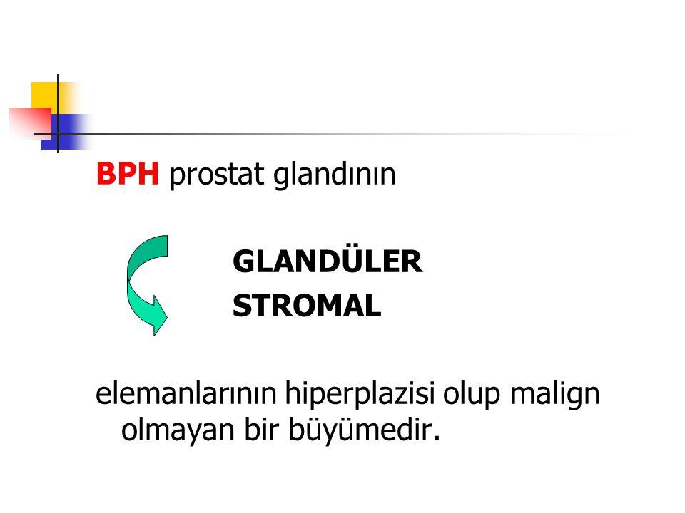 BPH prostat glandının GLANDÜLER. STROMAL.