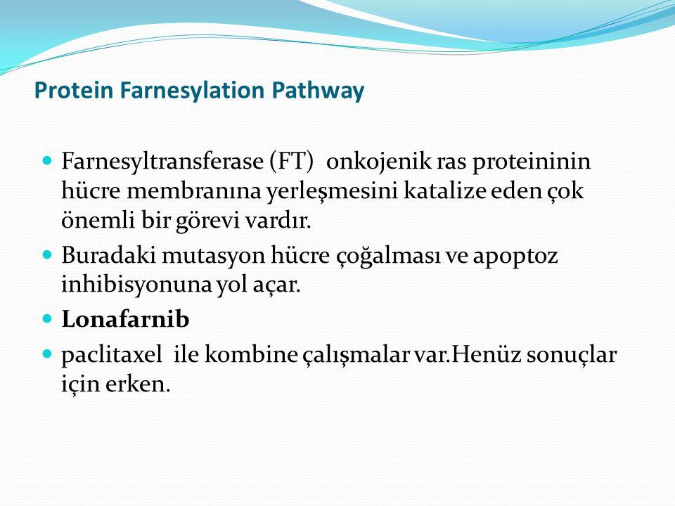 Protein Farnesylation Pathway