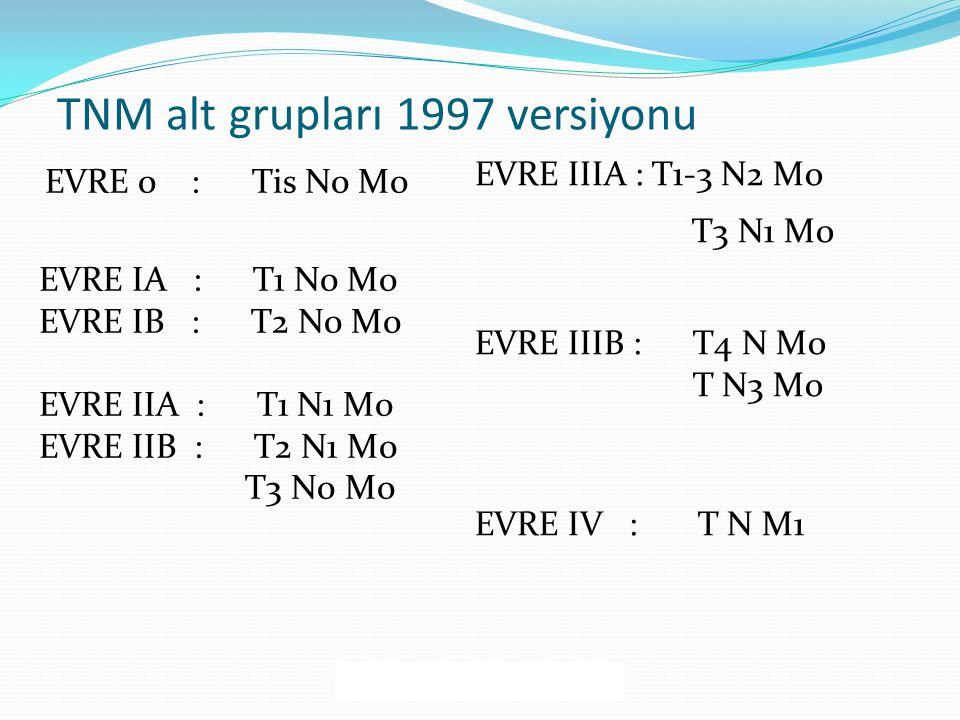 TNM alt grupları 1997 versiyonu