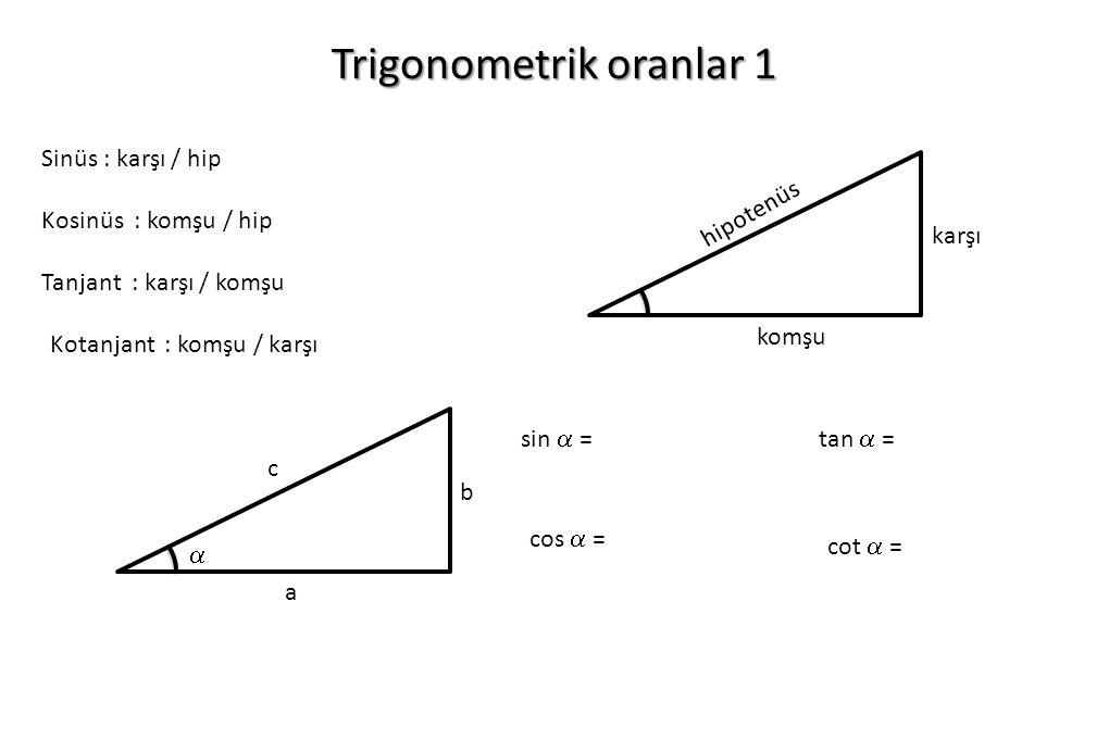 Trigonometrik oranlar 1