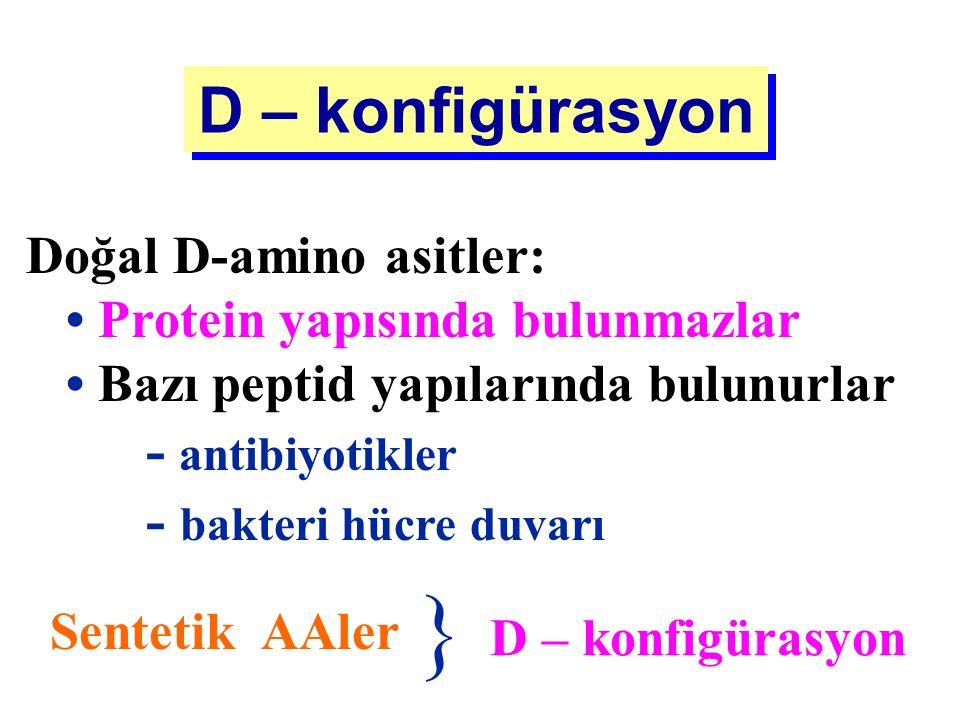 } D – konfigürasyon Doğal D-amino asitler: