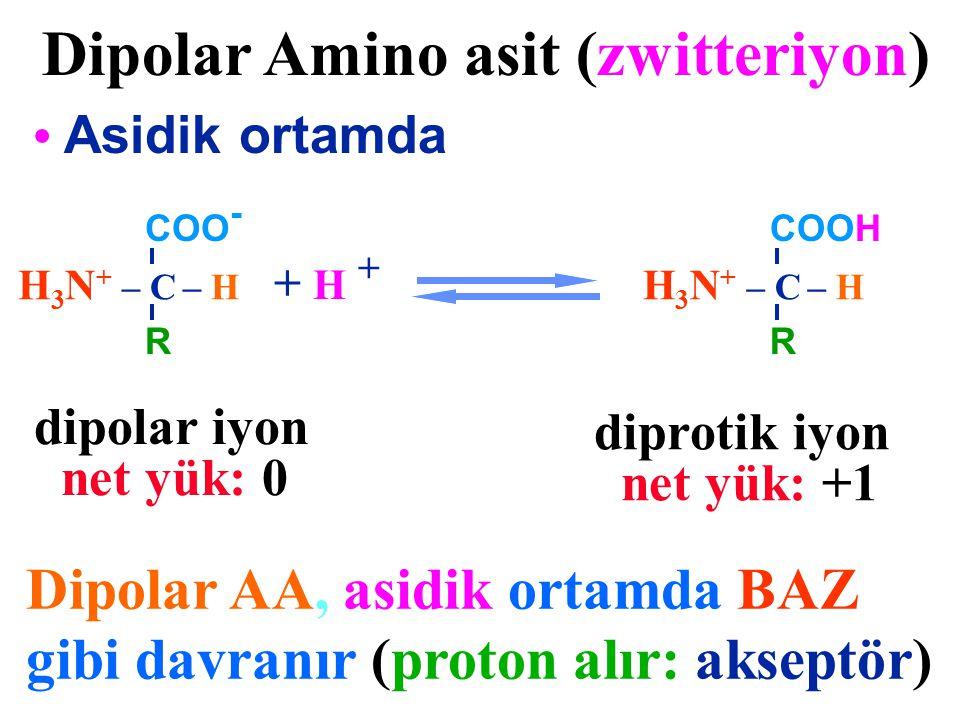 Dipolar Amino asit (zwitteriyon)