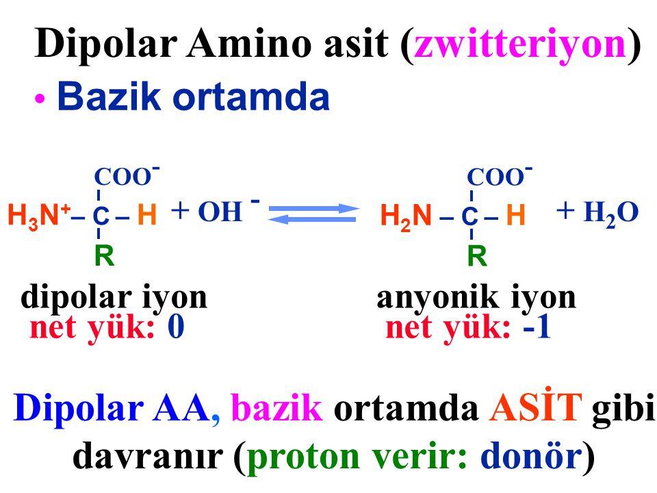 Dipolar AA, bazik ortamda ASİT gibi davranır (proton verir: donör)