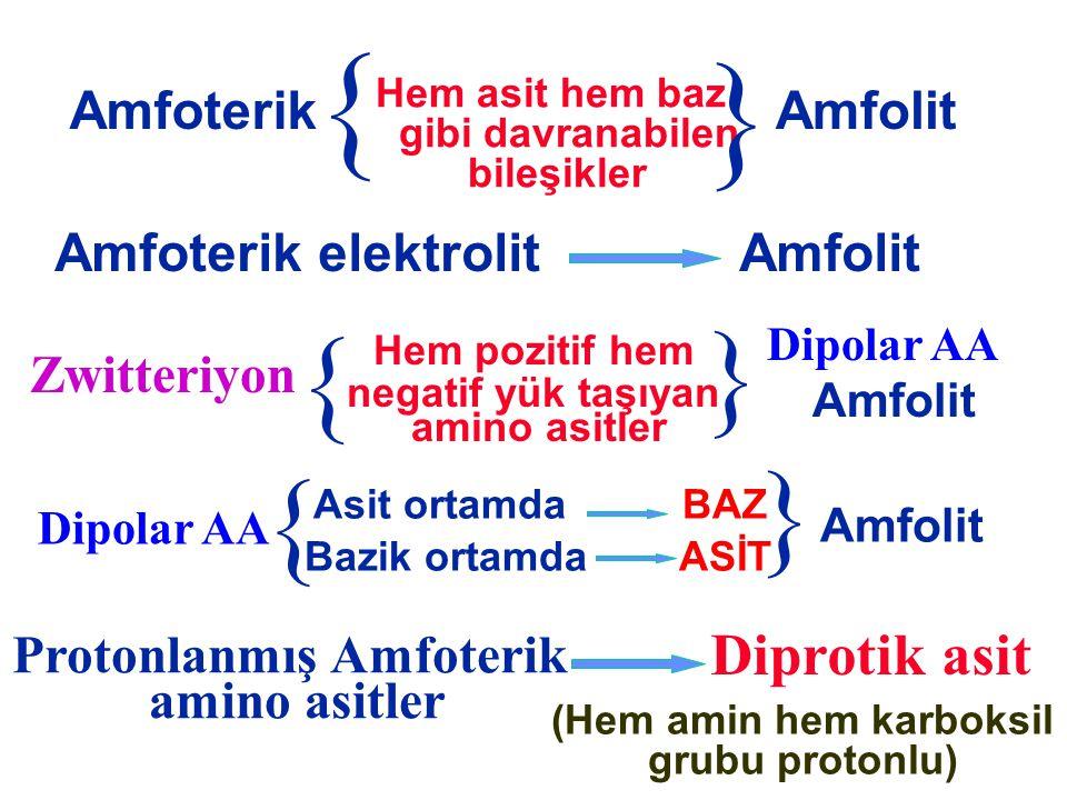 Protonlanmış Amfoterik (Hem amin hem karboksil grubu protonlu)