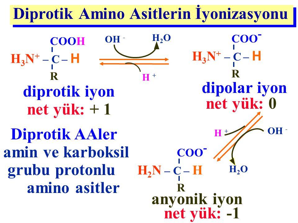 Diprotik AAler amin ve karboksil grubu protonlu