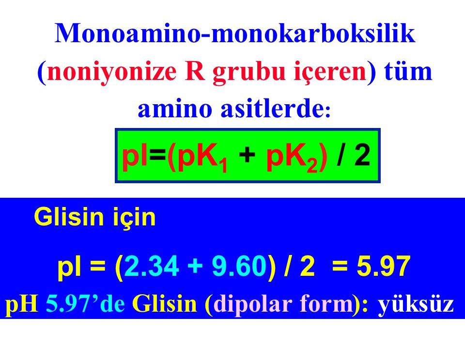 Monoamino-monokarboksilik (noniyonize R grubu içeren) tüm amino asitlerde: