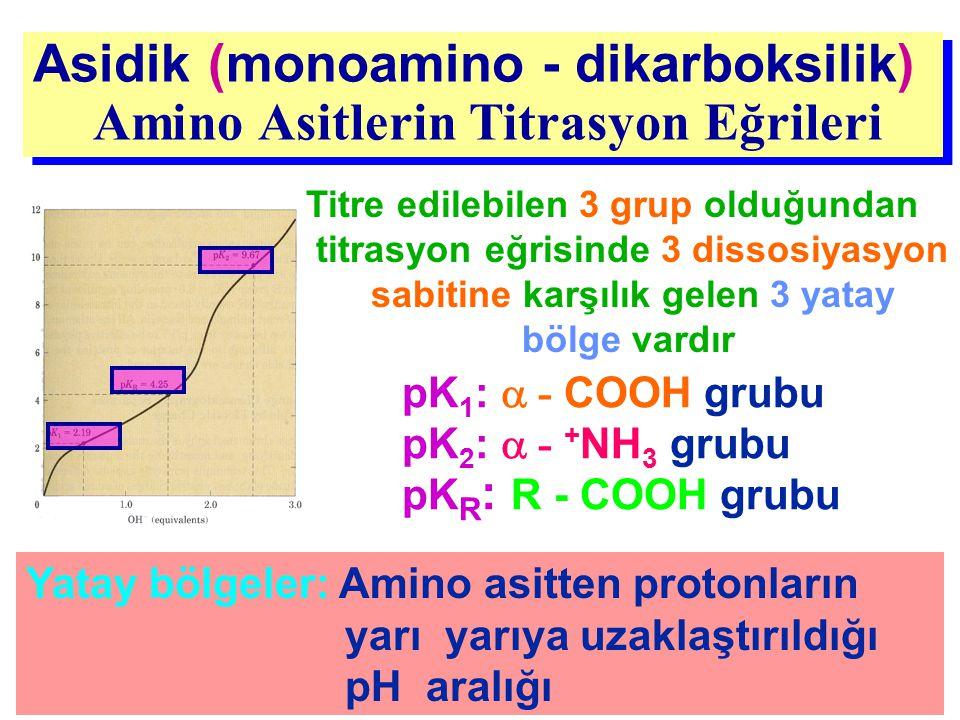 Asidik (monoamino - dikarboksilik) Amino Asitlerin Titrasyon Eğrileri