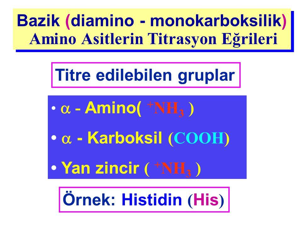 Bazik (diamino - monokarboksilik) Amino Asitlerin Titrasyon Eğrileri