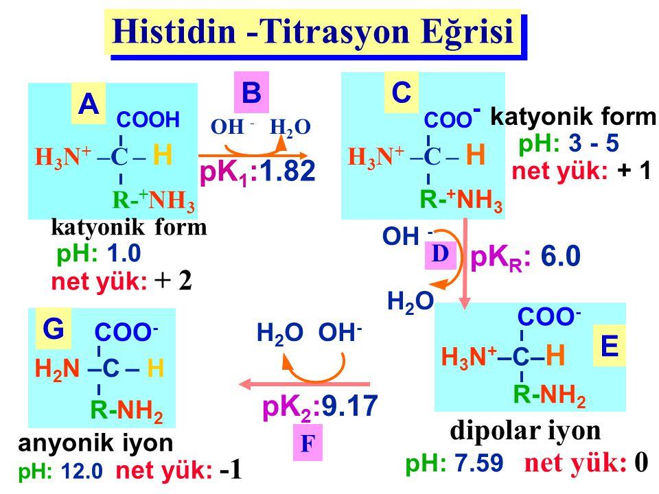 Histidin -Titrasyon Eğrisi