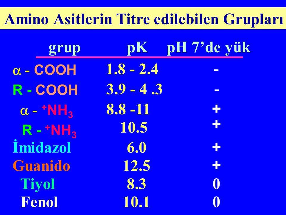 Amino Asitlerin Titre edilebilen Grupları
