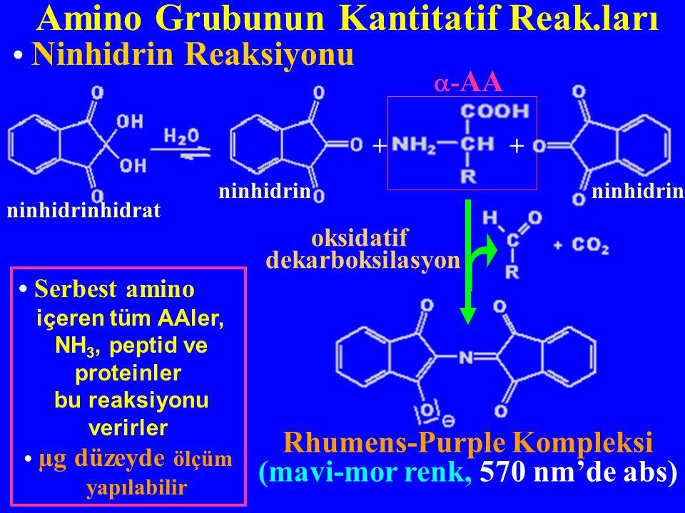 NH3, peptid ve proteinler bu reaksiyonu verirler