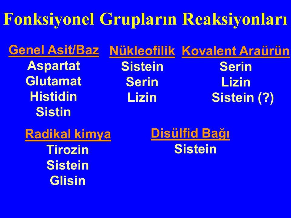 Fonksiyonel Grupların Reaksiyonları