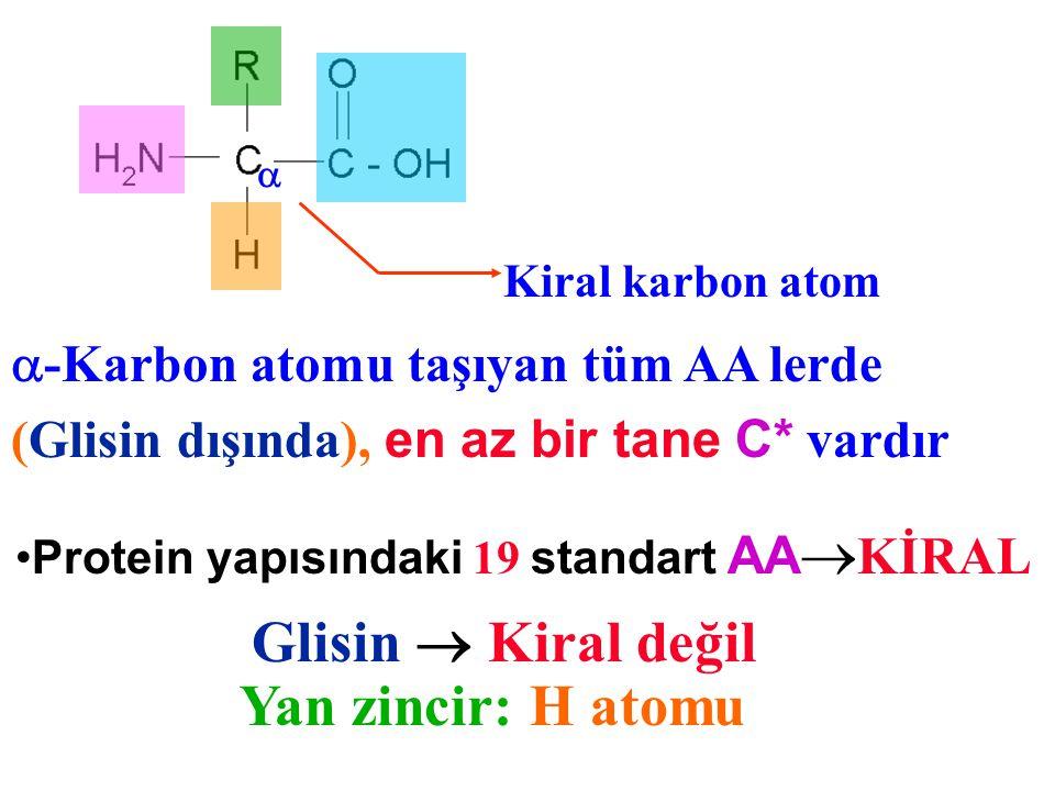 -Karbon atomu taşıyan tüm AA lerde