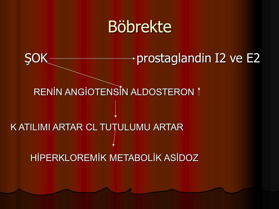 Böbrekte ŞOK prostaglandin I2 ve E2 RENİN ANGİOTENSİN ALDOSTERON