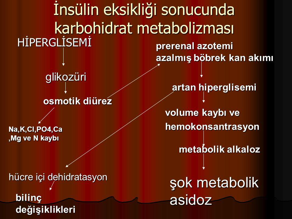 İnsülin eksikliği sonucunda karbohidrat metabolizması