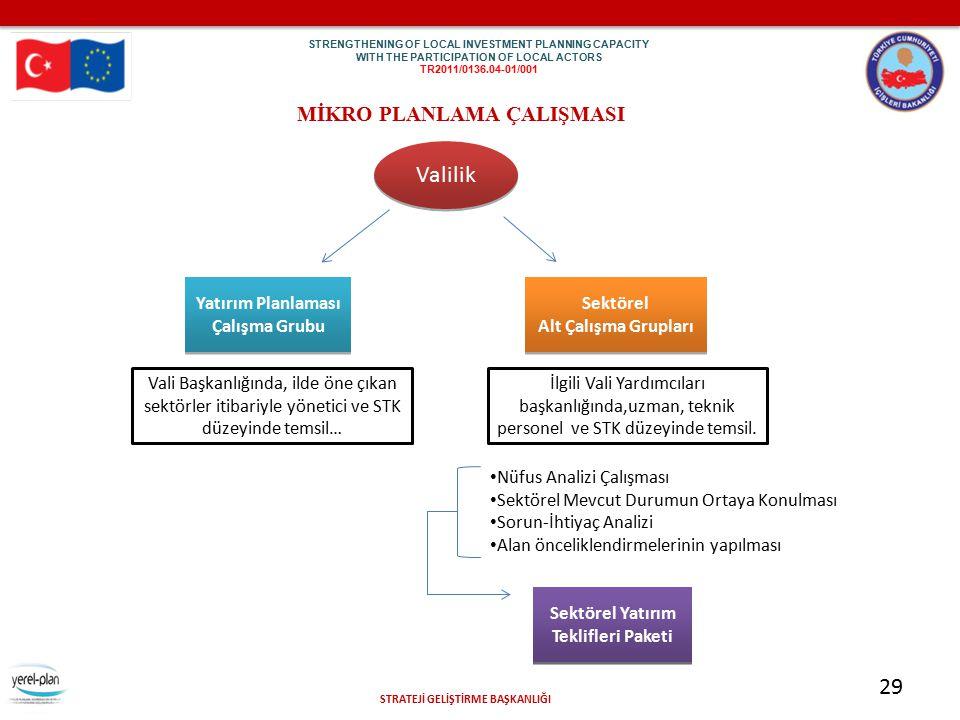 Valilik 29 29 MİKRO PLANLAMA ÇALIŞMASI Yatırım Planlaması