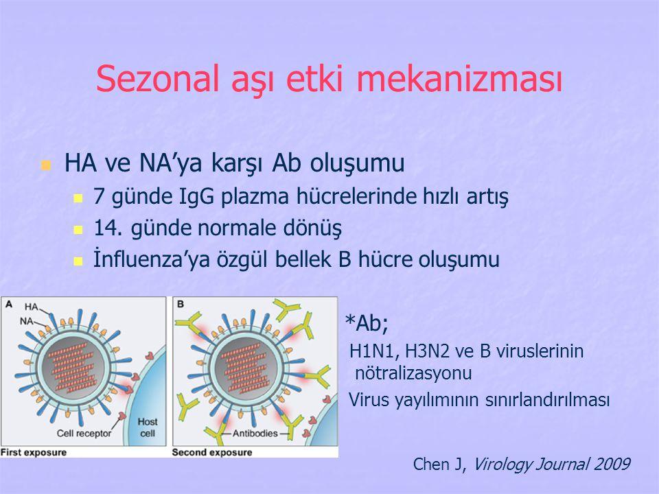 Sezonal aşı etki mekanizması
