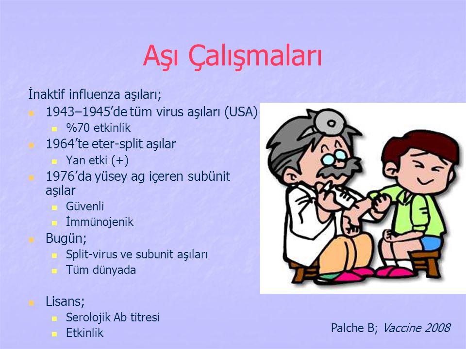 Aşı Çalışmaları İnaktif influenza aşıları;