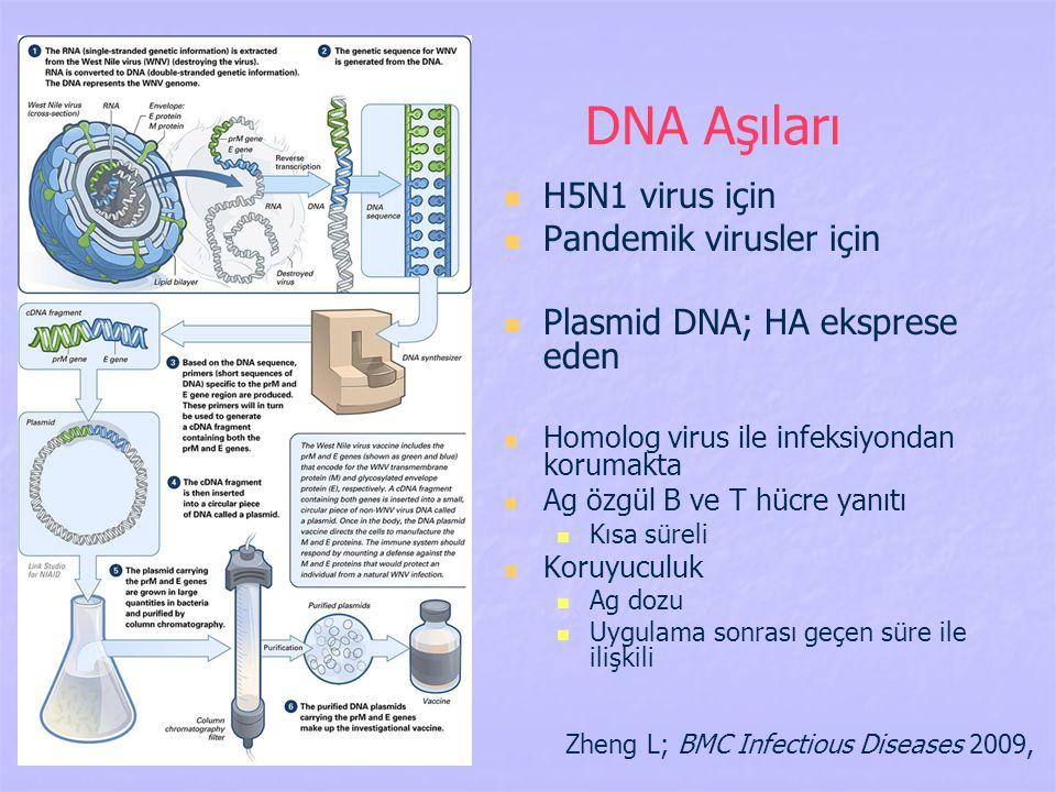 DNA Aşıları H5N1 virus için Pandemik virusler için