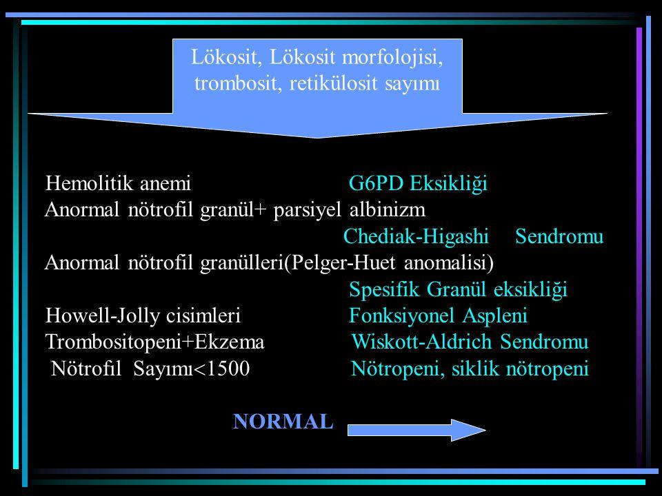 Hemolitik anemi G6PD Eksikliği